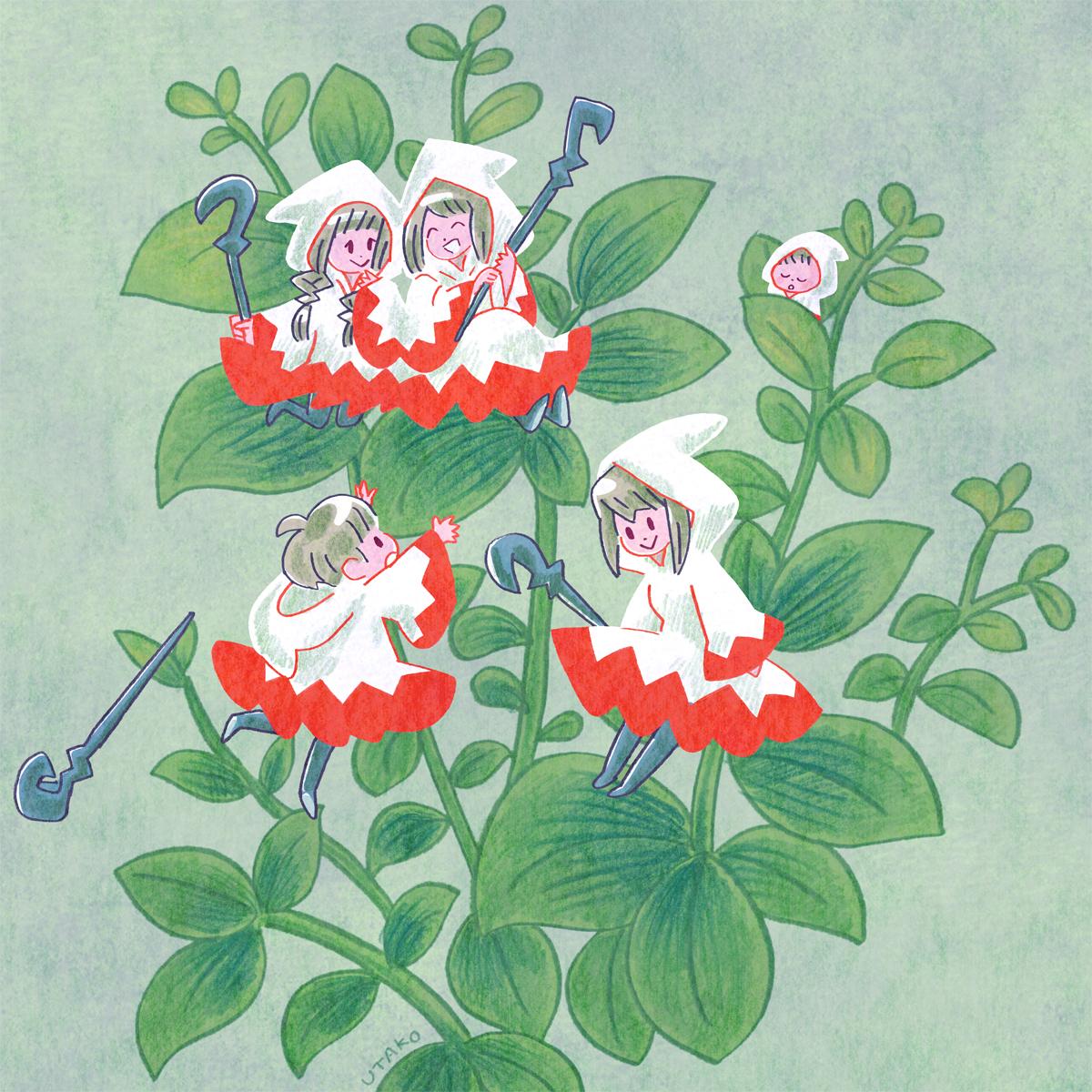 白魔道士の花s